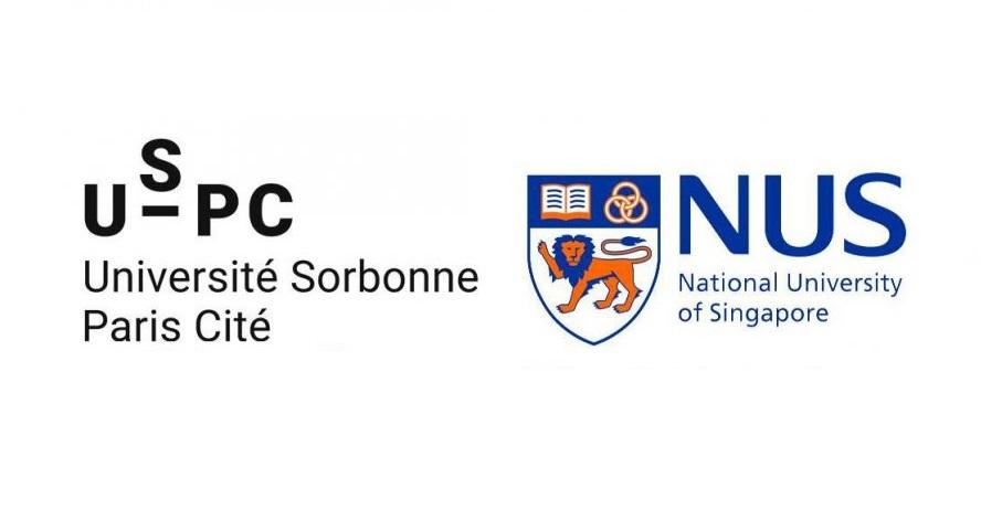 Uspc et nus lancent 3 appels projets conjoints pour 2017 for Chambre de commerce francaise singapour